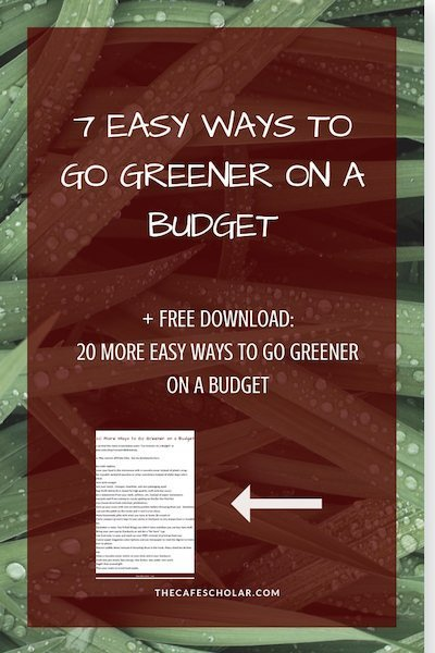 Change happens one choice at a time. These choices require almost no behavior change and will cost the same or less than what you are doing today. + FREE download with 20 more ways to go greener on a budget! - https://www.thecafescholar.com