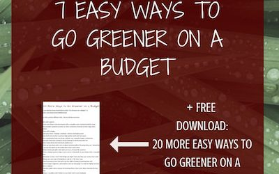 7 Easy Ways to Be a Little Greener on a Budget